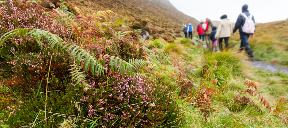 Do you like to explore